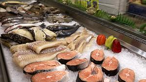 Холодильник для рыбы
